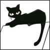 Slinky black cat